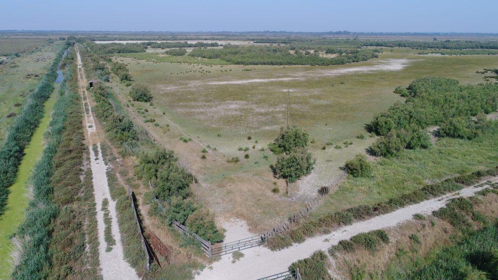 photo de drone 1
